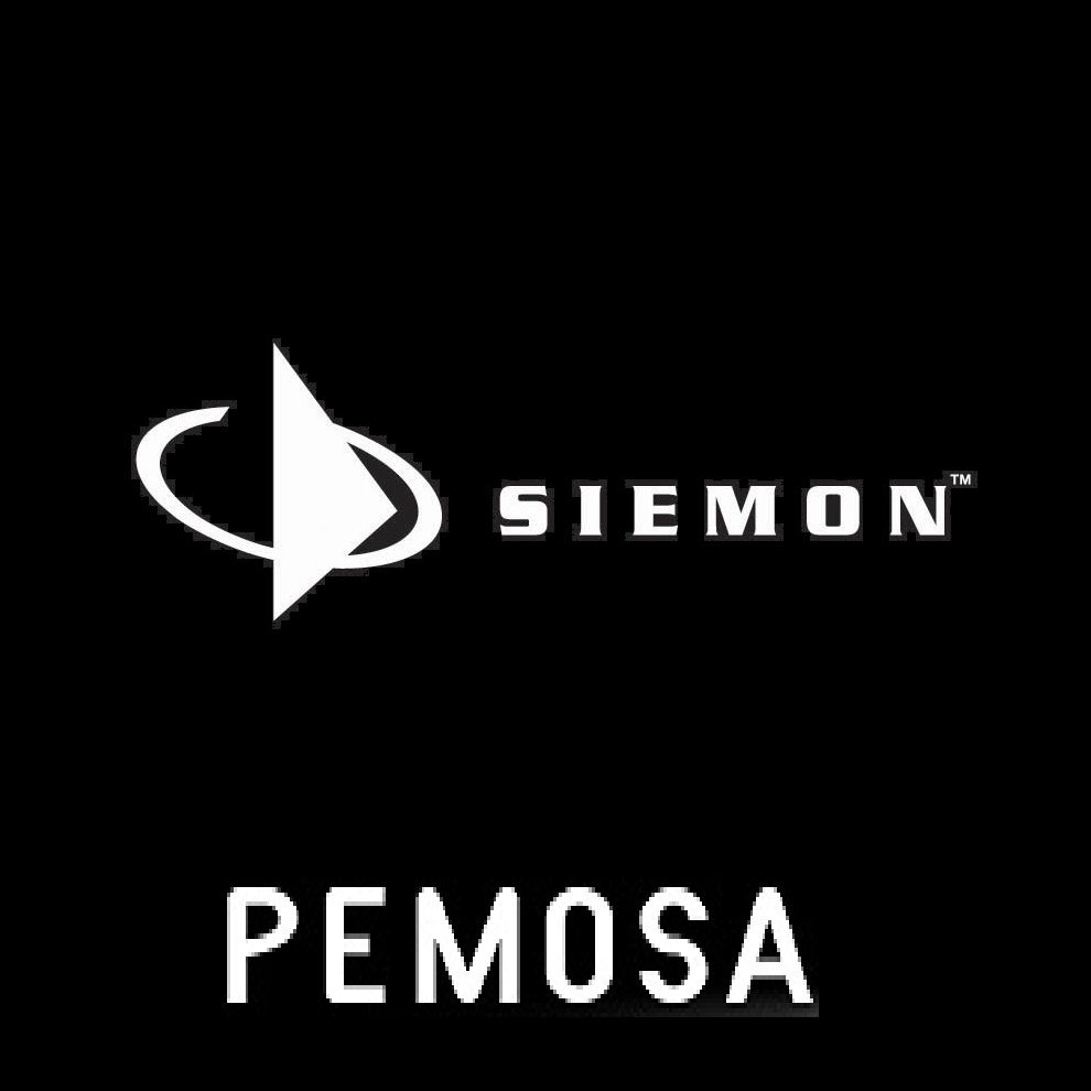 THE SIEMON COMPANY